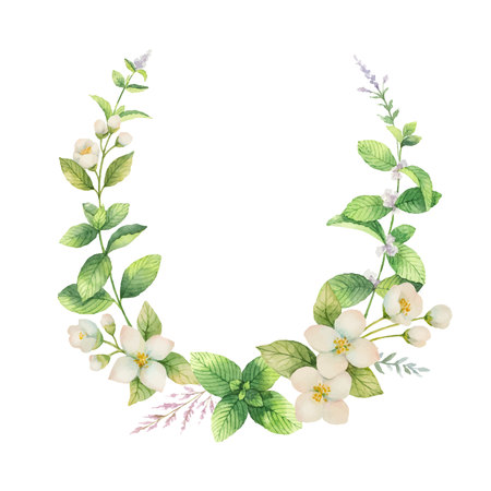 Watercolor vector frame of Jasmine and mint branches isolated on white background.