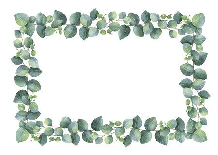 Akwarele ręcznie malowane prostokątna rama wektor z eukaliptusa srebrnego dolara.