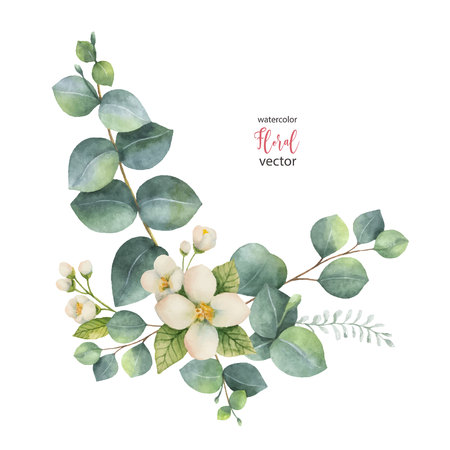 Grinalda de vetor em aquarela com folhas de eucalipto verde e jasmim. Foto de archivo - 91104005