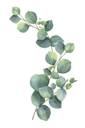 Couronne de vecteur aquarelle avec des feuilles d & # 39 ; eucalyptus vert et des symboles Banque d'images - 91103667