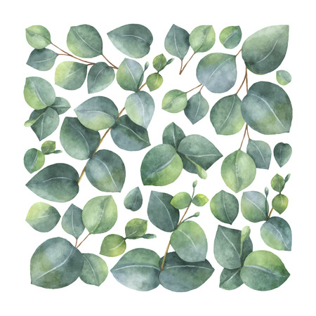 Watercolor vector card with green eucalyptus leaves and branches.