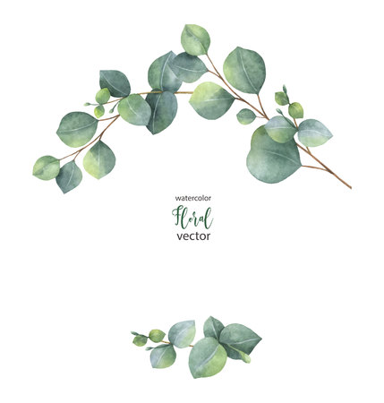 Watercolor vector wreath with green eucalyptus leaves and branches. 向量圖像