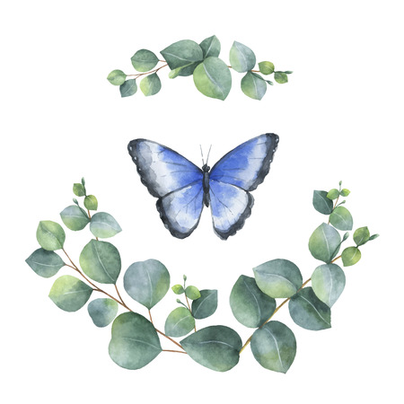 Watercolor vector hand painted wreath with green eucalyptus leaves and butterfly. Spring or summer flowers for invitation, wedding or greeting cards. Ilustração