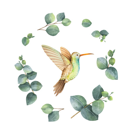 Watercolor vector wreath with green eucalyptus leaves and Hummingbird.