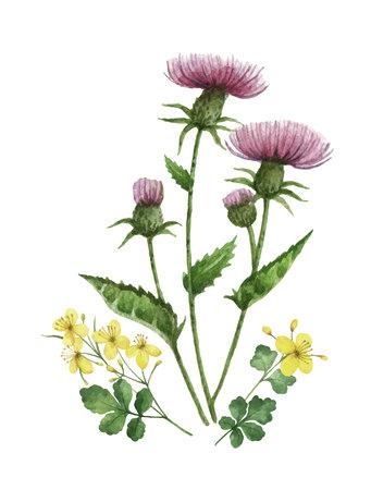 牧草地の植物と水彩ベクトルブーケ。カード、結婚式の招待状、ポスターのためのユニークな装飾は、日付や挨拶のデザインを保存します。  イラスト・ベクター素材