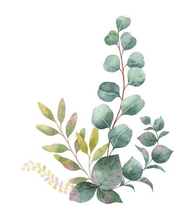 グリーン ユーカリの葉と枝水彩画の花束。