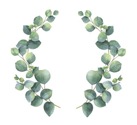 Aquarel vector krans met zilveren dollar eucalyptus bladeren en takken. Healing Herbs voor kaarten, bruiloftuitnodigingen, prijzen, overwinningen en succes. Zomerbloemen met ruimte voor uw tekst. Stockfoto - 92237719
