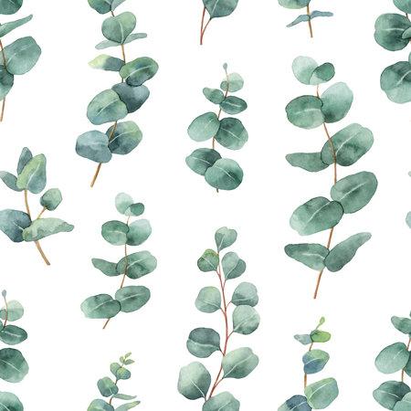 Nahtloses Muster des Aquarellvektors mit Eukalyptusblättern und -niederlassungen des silbernen Dollars. Vektorgrafik