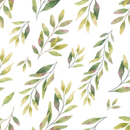 水彩ベクトルは、銀ドルユーカリの葉や枝とシームレスなパターン。