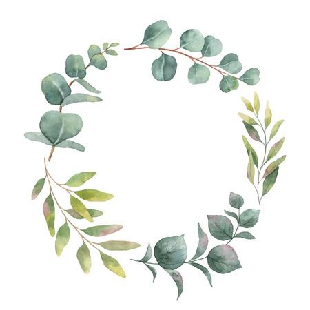 Aquarellvektorkranz mit grünen Eukalyptusblättern und -niederlassungen. Frühling oder Sommerblumen für Einladungs-, Hochzeits- oder Grußkarten.