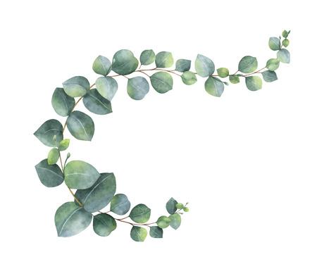 Wieniec wektor akwarela z zielonych liści eukaliptusa i gałęzi. Wiosenne lub letnie kwiaty na zaproszenia, ślub lub kartki z życzeniami.