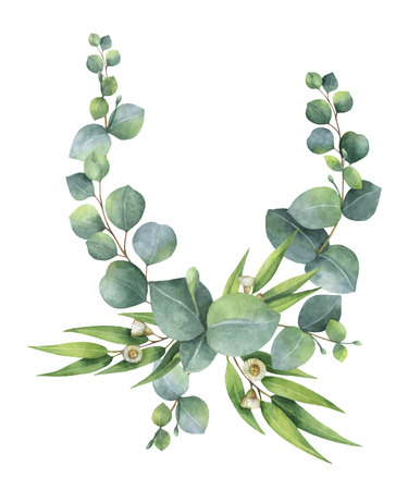 Corona di vettore dell'acquerello con foglie e rami di eucalipto verde. Fiori primaverili o estivi per biglietti d'invito, matrimonio o auguri. Archivio Fotografico - 93080676