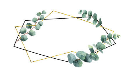 Watercolor vector composition from the branches of eucalyptus and geometric frame. Çizim