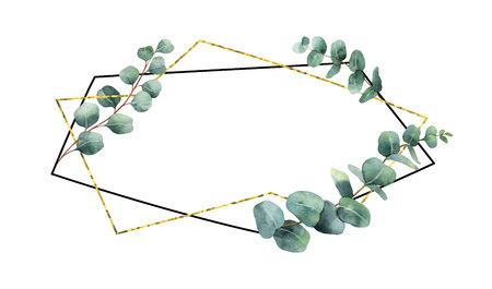 Waterverf vectorsamenstelling van de takken van eucalyptus en geometrisch kader.