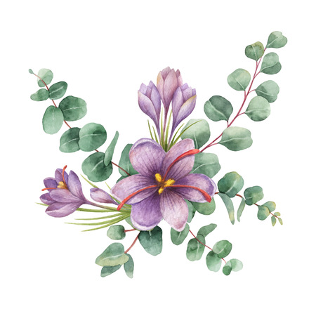 Watercolor vector bouquet with green eucalyptus leaves and flowers of saffron. Reklamní fotografie - 93947658