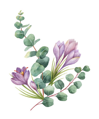 Watercolor vector bouquet with green eucalyptus leaves and flowers of saffron.