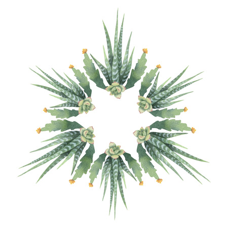 Watercolor vector round mandala of cacti and succulent plant Imagens - 95446124