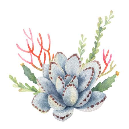 白い背景に分離されたサボテンと多肉植物の水彩ベクターブーケ。あなたのプロジェクト、グリーティングカードや招待状のための花のイラスト。  イラスト・ベクター素材