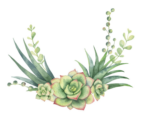 Watercolor vector wreath of cacti and succulent plants isolated on white background. Standard-Bild - 96327000