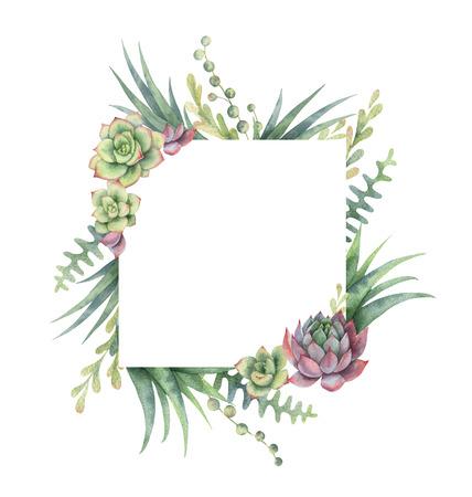 Marco de la acuarela de cactus y plantas suculentas aislados sobre fondo blanco . Foto de archivo - 97097420