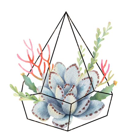Watercolor composition of cacti and succulents in terrariums geometric florariume isolated on white background.