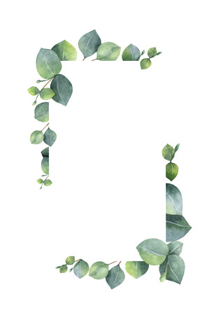Watercolor banner with green eucalyptus leaves and branches. Imagens