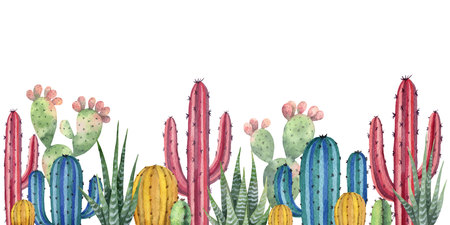 Watercolor illustration of cactus plants