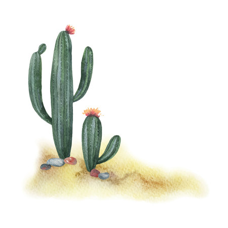 Watercolor illustration with desert and cacti.