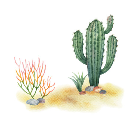Watercolor vector background of landscape with desert and cacti. High quality illustration with mountains and dunes for your design.