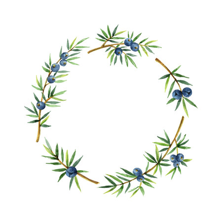 Watercolor wreath plants juniper isolated on white background.