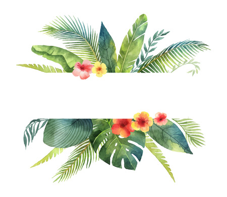 Watercolor vector banner tropical leaves and branches isolated on white background. Illustration