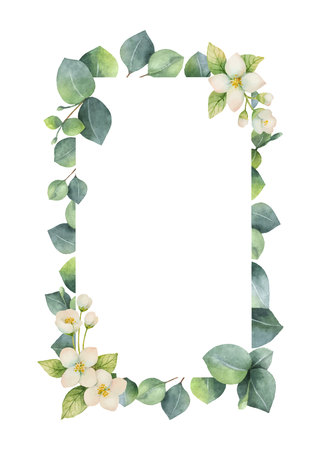 Watercolor vector frame with green eucalyptus leaves, Jasmine flowers and branches.