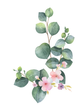Watercolor vector bouquet with green eucalyptus leaves, pink flowers and branches. Vettoriali