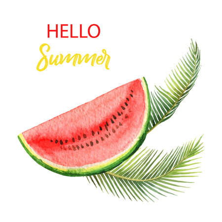 Watercolor vector card tropical leaves and slice of watermelon isolated on white background. Иллюстрация