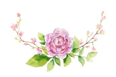 Illustrazione di pittura a mano di vettore dell'acquerello di fiori di peonia e foglie verdi.