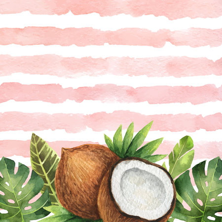 Watercolor vector banner tropical leaves and coconut isolated on the background of stripes. 일러스트