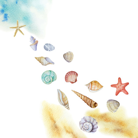 Watercolor vector multicolored seashells and beach isolated on a white background.