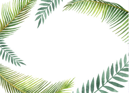 Watercolor vector banner tropical leaves and branches isolated on white background. Illustration for design wedding invitations, greeting cards, postcards with space for your text. Illustration