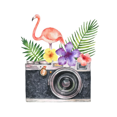 Watercolor vector card with camera, palm tree, flowers, tropical leaves and pink Flamingo isolated on white background. Illustration for design poster, greeting cards, decor.
