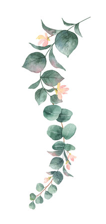 Watercolor vector hand painted silver dollar eucalyptus leaves and pink flowers. Floral illustration isolated on white background. Vectores