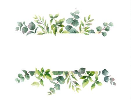 Bannière horizontale de peinture à la main de vecteur aquarelle avec des feuilles et des branches vertes. Fleurs de printemps ou d'été pour invitation, mariage ou cartes de voeux.