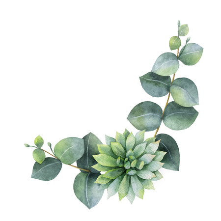 Watercolor wreath with eucalyptus leaves and succulents . 스톡 콘텐츠