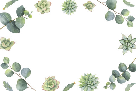 Watercolor vector banner with eucalyptus leaves and succulents. Illustration for wedding invitation, save the date or greeting design. Spring or summer flowers with space for your text.