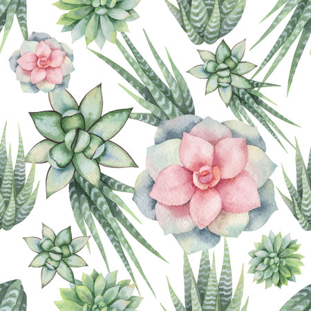 Watercolor vector seamless pattern of cacti and succulent plants isolated on white background. Flower illustration for your projects, greeting cards and invitations.