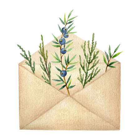 Watercolor vector postal envelope with green spruce branches and juniper. Christmas and new year greeting card.
