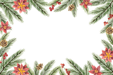 Watercolor vector Christmas frame with fir branches and flower poinsettias. Illustration for greeting cards and invitations isolated on white background. Illustration