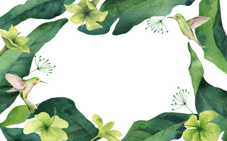 Watercolor vector card tropical leaves, hummingbird and flowers isolated on white
