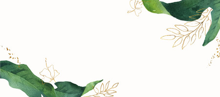 Watercolor vector banner tropical leaves isolated on white background. Illustration for design wedding invitations, greeting cards, postcards.