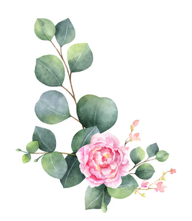 Watercolor vector wreath with green eucalyptus leaves, peony flowers and branches. Spring or summer flowers for invitation, wedding celebration or greeting cards. Vektorové ilustrace
