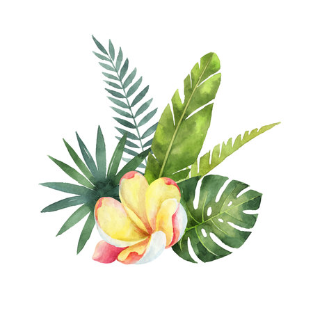 Watercolor vector bouquet tropical leaves and flowers isolated on white background. Illustration for design wedding invitations, greeting cards, postcards.